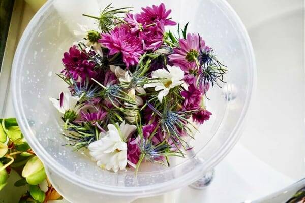 purple wildflower and thistle blooms with ends trimmed in bucket